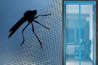 сетка против комаров