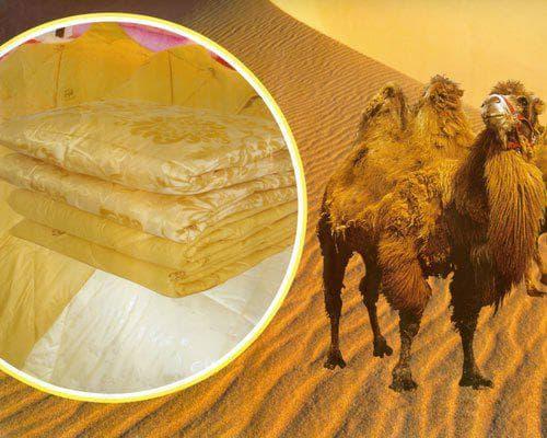 двуспального одеяла наполнитель шерсть