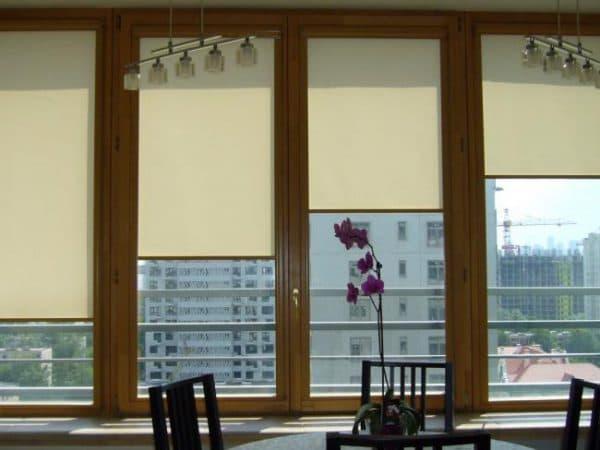 шторы от солнца на окна